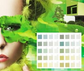 Акрилатная фасадная краска Баумит Пура Колор (Baumit PuraColor)